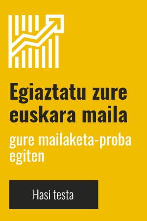 banner learn basque